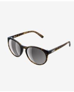 Know Sunglasses | Tortoise Brown