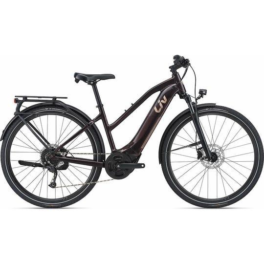 Amiti E+ 2 | E-Bike